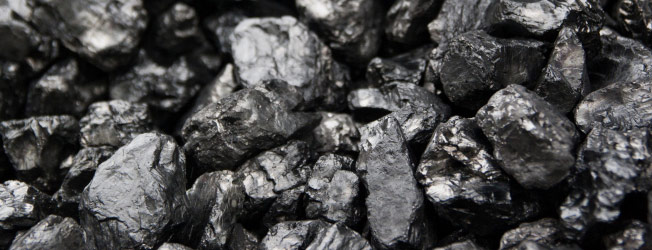 Coal's formation is a window on an ancient world