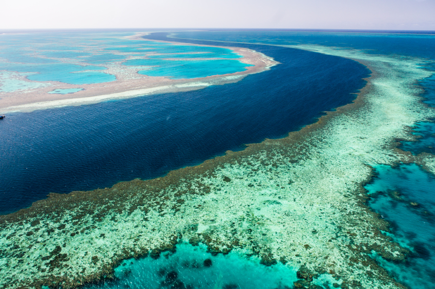 The Great Barrier Reef is in the spotlight at conservation groups argue with Adani mining