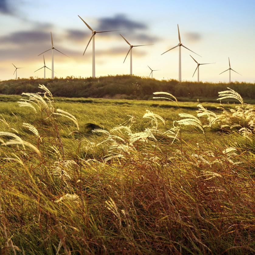 windfarm-agl-lowres
